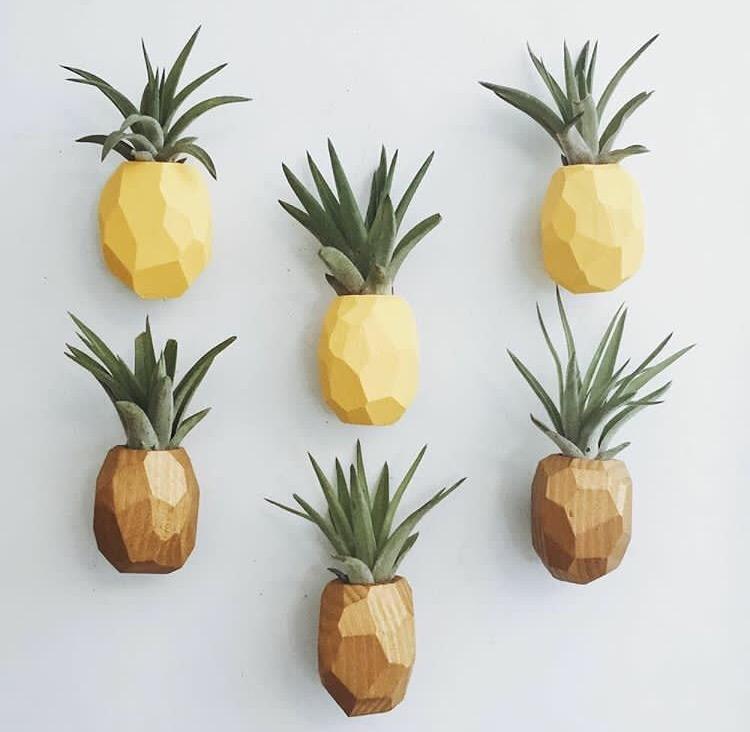 pinePlanDeco
