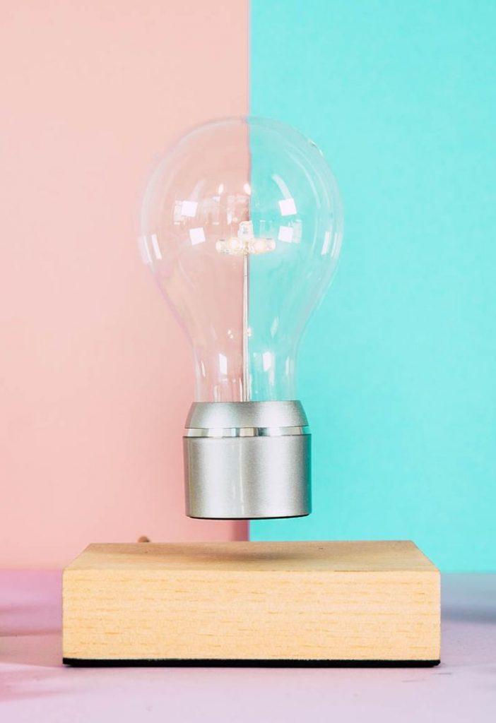 690586326e3e3921cc6a87b261ddebc6 bulbs