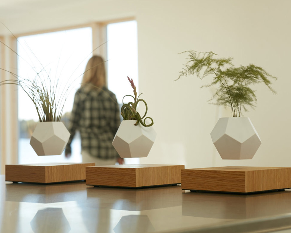 flyte lyfe trio levitating planters background on webshop wooden amsterdam