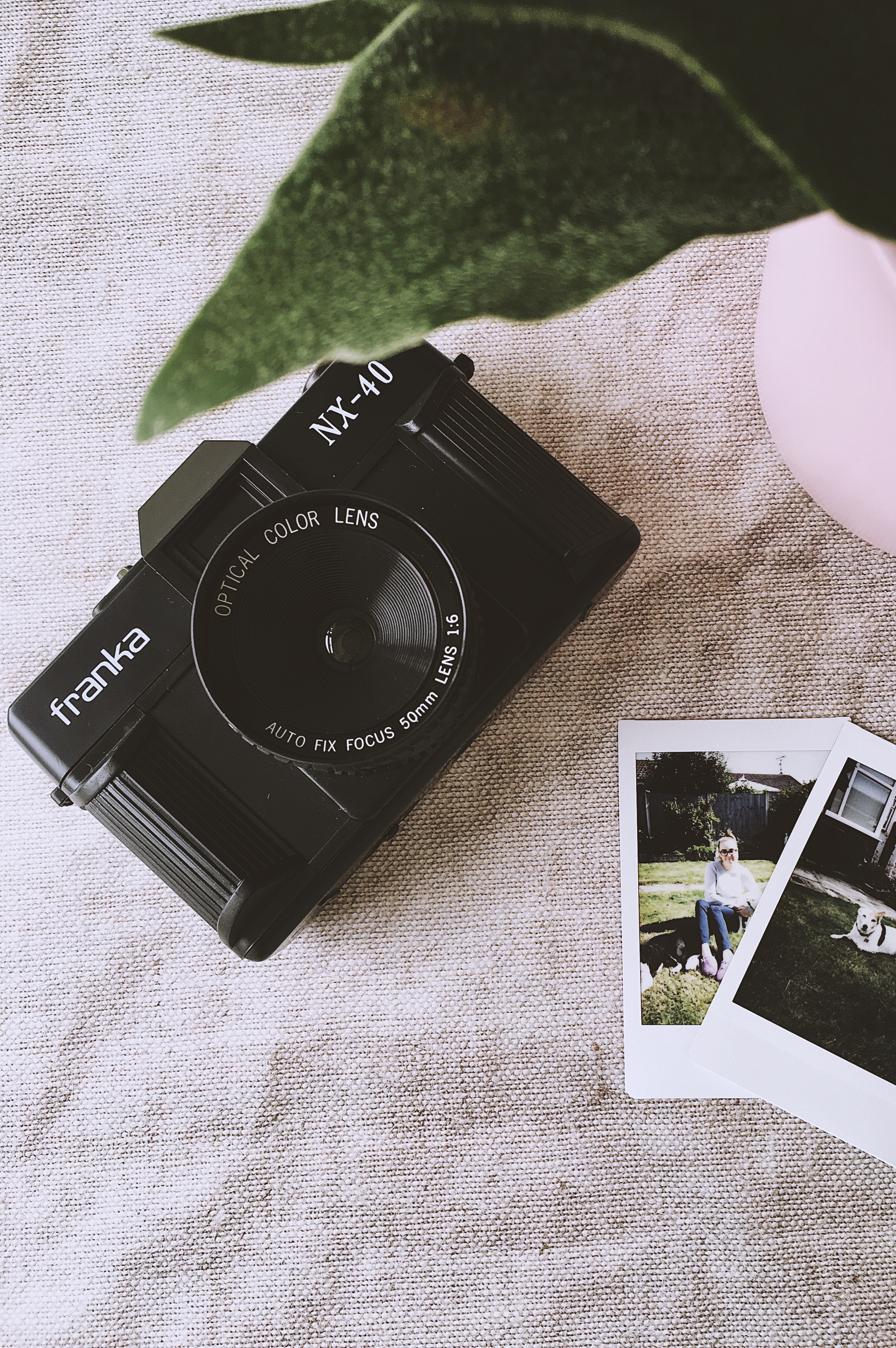 analog camera antique business 1381242
