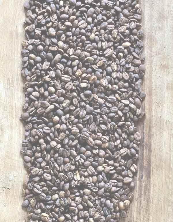 Caffee salento colombia