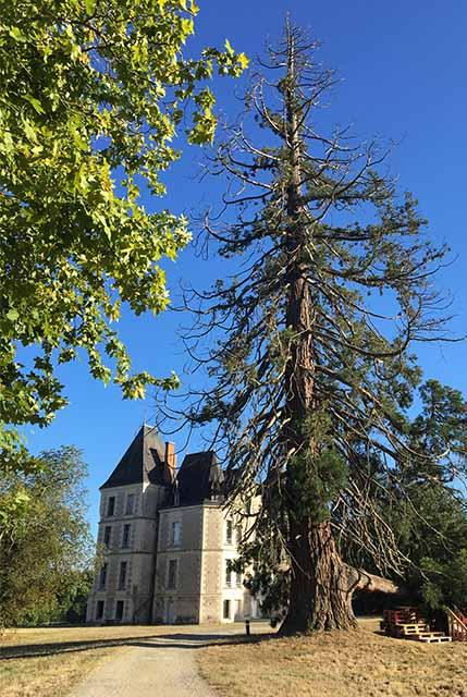 Domaine de boisbuchet castle